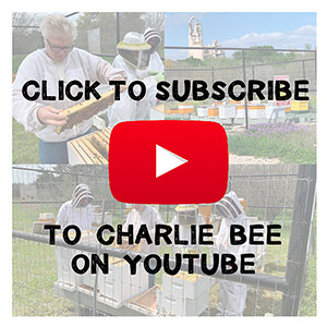 Charlie Bee YouTube Subscription Button